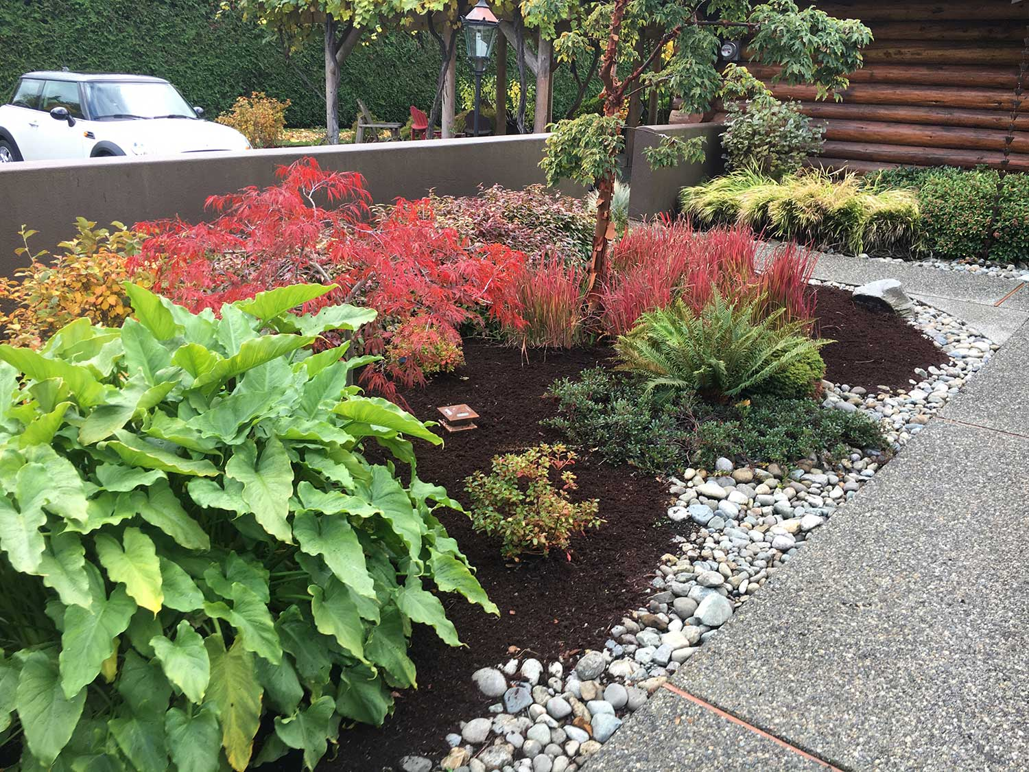 landscaping and xeriscaping
